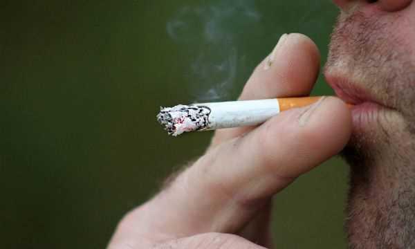 Diadema proíbe fumantes em áreas livres de parques - Diário do Grande ABC