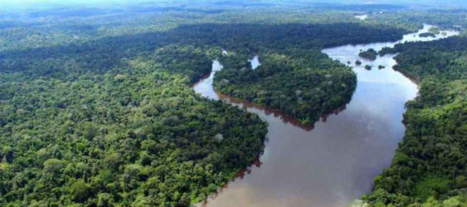 Fundo Amazônia tem 40 projetos, que somam R$ 1,4 bi, paralisados Diário do Grande ABC - Notícias e informações do Grande ABC: Santo André, São Bernardo, São Caetano, Diadema, Mauá, Ribeirão Pires e Rio Grande da Serra
