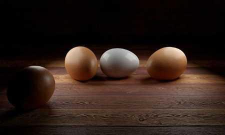 O ovo realmente é tão nutritivo quanto as pessoas falam? Diário do Grande ABC - Notícias e informações do Grande ABC: Santo André, São Bernardo, São Caetano, Diadema, Mauá, Ribeirão Pires e Rio Grande da Serra