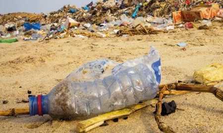 Como o lixo pode impactar o meio ambiente?  Diário do Grande ABC - Notícias e informações do Grande ABC: Santo André, São Bernardo, São Caetano, Diadema, Mauá, Ribeirão Pires e Rio Grande da Serra